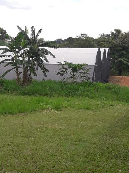 Sítio Rural À Venda, Barreiro, Santo Antônio De Posse. - Si0023