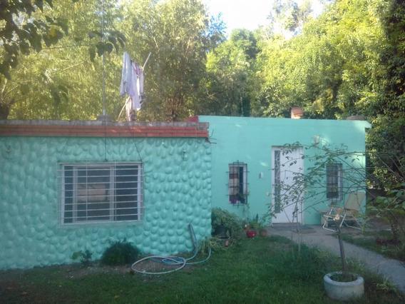 Casa En Alquiler Delta Tigre - Rio Lujan - A Pesar De Todo