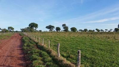 Fazenda A Venda Em Corguinho - Ms (pecuária) - 898