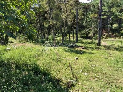 Terreno - Centro - Ref: 286461 - V-286461