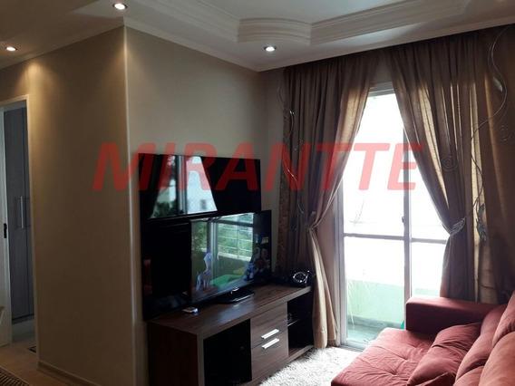 Apartamento Em Cachoeirinha - São Paulo, Sp - 299051