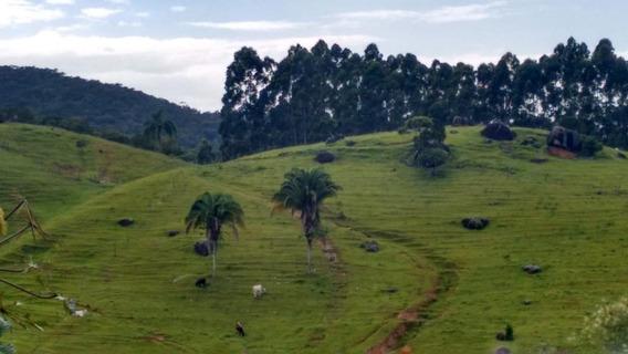 Terreno Em São Sebastião, Palhoça/sc De 0m² À Venda Por R$ 100.000,00 - Te185284