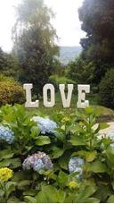 Alquiler De Letras Love Para Eventos