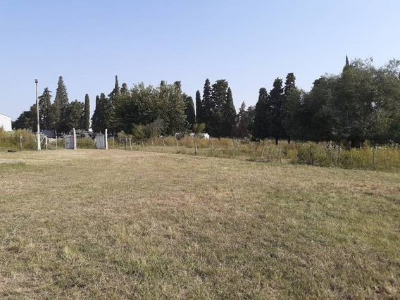 Quintas Alquiler Victoria