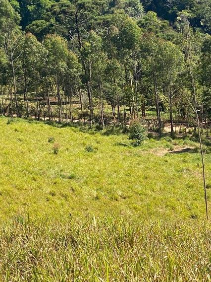 09c- Venha Comprar Seu Terreno Em Santa Isabel