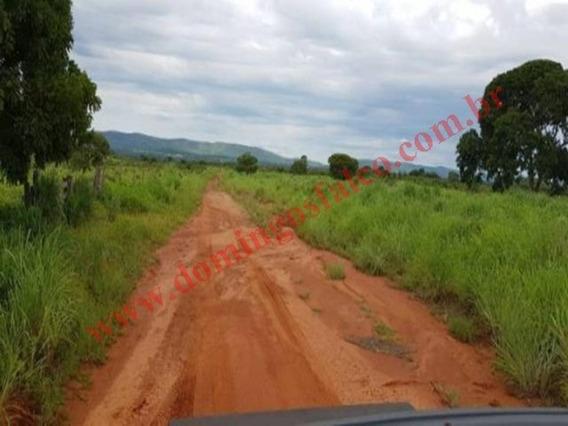 Venda - Fazenda - Zona Rural - Jaú Do Tocantins - To - D0402
