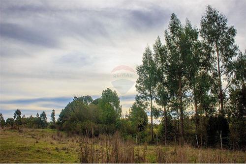 Imagen 1 de 30 de Hermosa Parcela, Ancud Chiloé