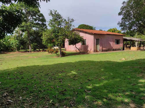 Chácara, Região Souza Lima Em Vg-mt