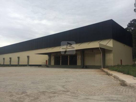 Galpao Industrial - Cursino - Ref: 2437 - L-2437