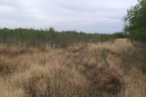 Terrenos En Venta En Salinas Victoria, Salinas Victoria