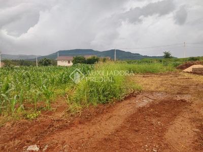 Terreno - Linha Forqueta (distrito) - Ref: 288289 - V-288289