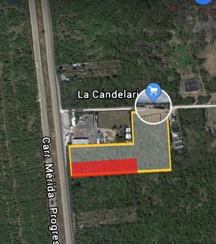 Imagen 1 de 6 de Terreno De 10,000 M2 Sobre Carretera Merida Progreso.