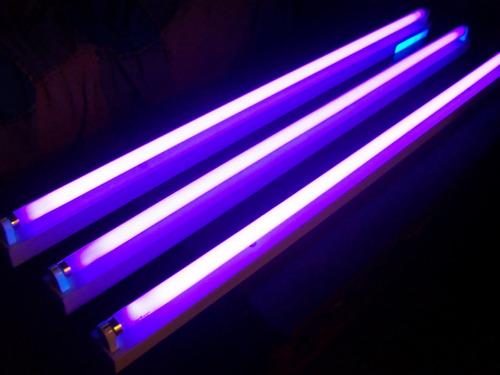 Lâmpada Blacklight 30watts - T8 - Eliminador De Insetos