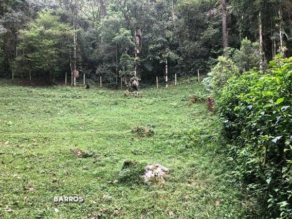 Terreno Condomínio Bosques De Mauá