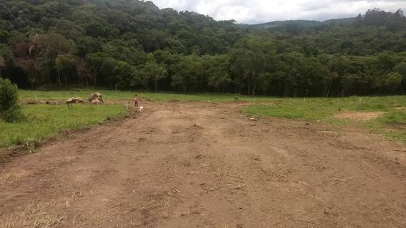 L.s Saia Ja Do Aluguel Terrenos Sem Consulta Spc Serasa