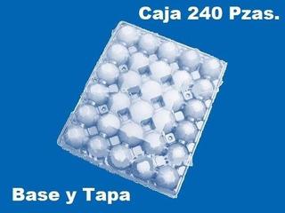 Caja De 240 Pzas. Estuche Para 30 Huevos Plástico Blister