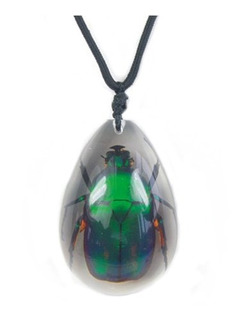 Wgi Large Insect Green Rose Chafer Escarabajo Collar