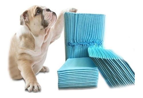 40 Pañales Tipo Sabanillas Mascotas Perros 60x90 Cms