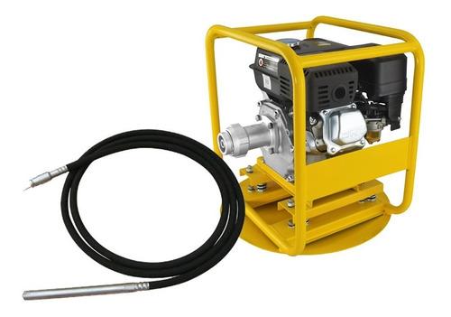 Vibrador Hormigón Bta Motor A Explosión Con Manguera 993952