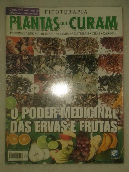 Plantas Que Curam - O Poder Medicinal - Revista