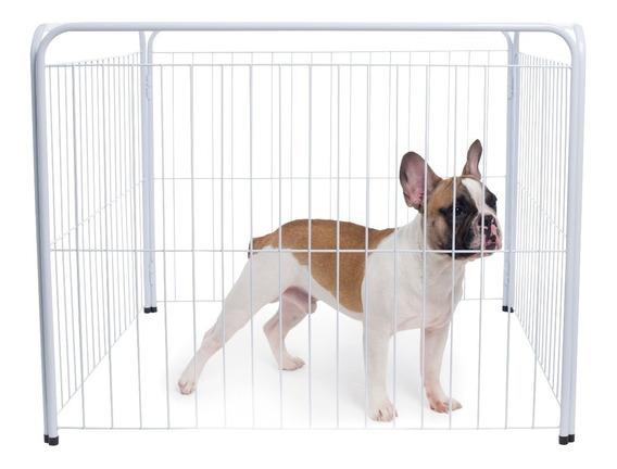 Casinha Cachorro Cercado Pet Filhotes 4/90cm + Kit Brinde