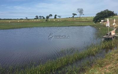 Fazenda 159 Alqueirões Localizada Em Taipas To