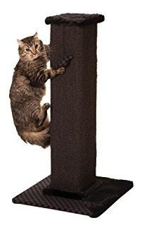 Max Y Marlow Scratch Post Torre