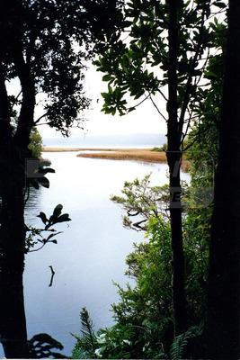 Parcela De Agrado En Venta, Lago Tepuhueico