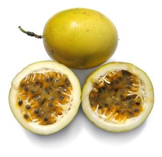 100 Semillas De Maracuya Amarillo (passiflora Edulis)