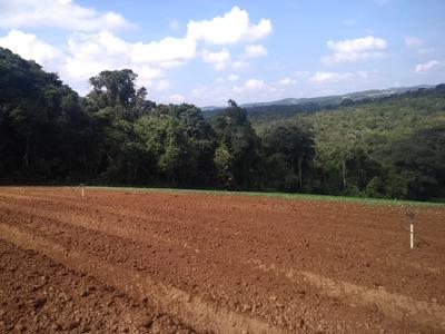 L. Adquira Seu Terreno, Preços De Lançamento Em Ibiúna