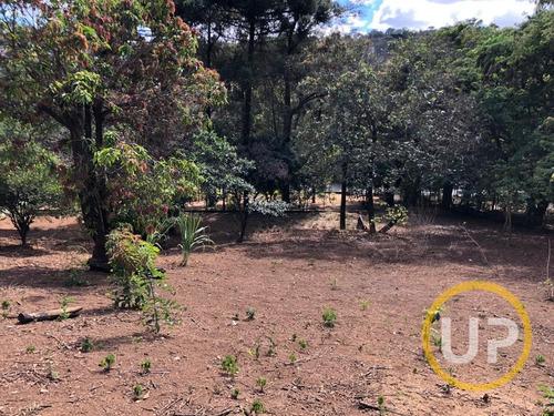 Lote / Terreno Em Avenida  -  São José Da Lapa - 8631