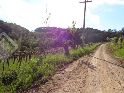 Terreno - Centro - Ref: 202879 - V-202879