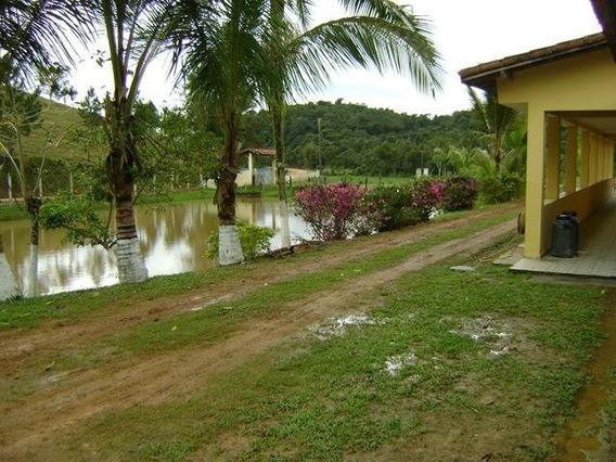Excelente Fazenda Em Sete Barras - Sp Capital - 52591