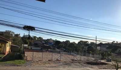 Terreno Para Alugar, 905 M² Por R$ 3.000,00/mês - Curitiba