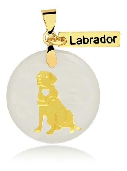 Colar Corrente Pingente Cachorro Labrador Folheado A Ouro