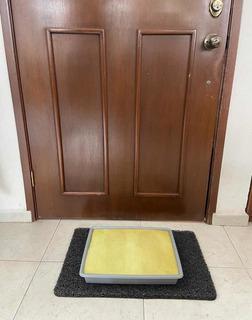 Charola / Tapete Desinfectante Para Calzado