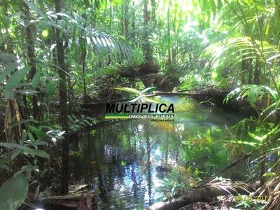 Fazenda Em Amapá Tartarugalzinho - 236 Hectares - 189