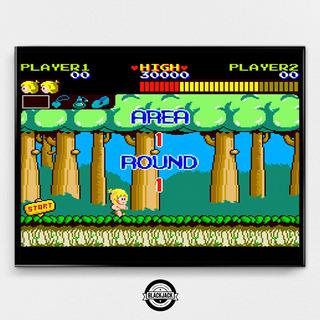 Cuadro Wonder Boy Arcade Gamer 40x50 Slim