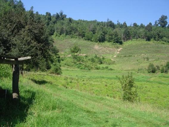 Rancho En Venta.
