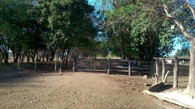 Fazenda Para Venda Em Ipameri - 058