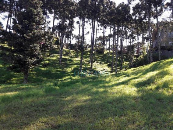 Terreno À Venda, 840 M² Por R$ 590.000 - Condomínio Aspen Mountain - Gramado/rs - Te0551