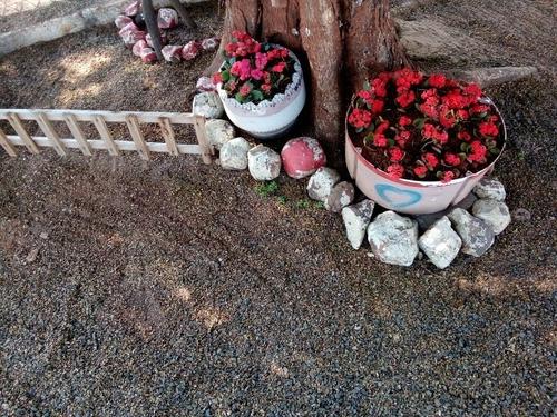 Imagem 1 de 4 de Servicos De Jardinagem E Paisagismo