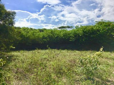 Terreno Em Povoado De Pium, Nísia Floresta/rn De 0m² À Venda Por R$ 110.000,00 - Te210412