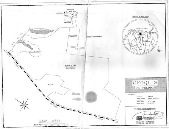 Centenario Alquilo Terrenos Desde 750 M2 A 5 Ha Ofertar