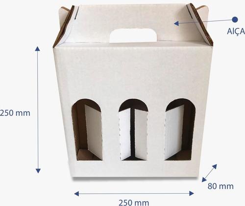 Caixa De Papelão Cerveja Artesanal Branca 03 Garrafas 25 Uni