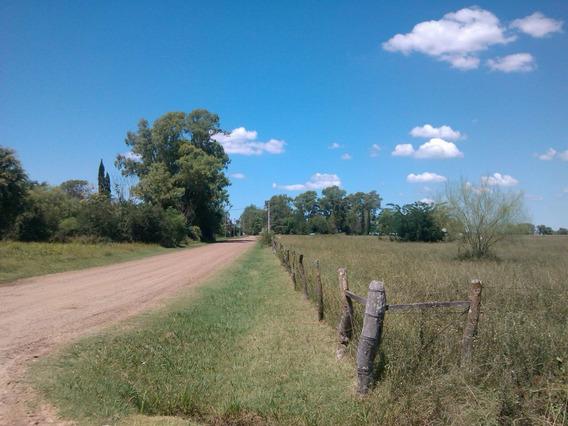 Venta Campo Entre Rios Sta Anita 22,700 Ha Arboleda 7000 M2