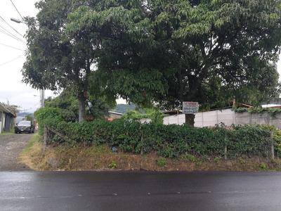 501 Mtrs En San Rafael De Desamparados San Jose 88601257