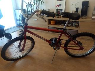 Bicicleta Rodado 20 Cros Marca Lucerna Color Roja