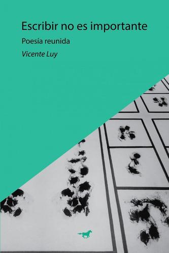 Escribir No Es Importante - Vicente Luy - Caballo Negro