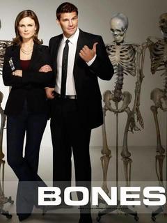 Bones-todas Las Temporadas